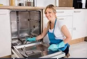 reparación, mantenimiento e instalación de cocinas a gas.