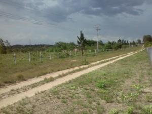 terreno 3 hectareas,via km 70, entrada en km 50,servicios electricidad