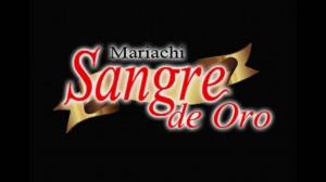 mariachi valencia sangre de oro edo carabobo