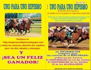 hipismo, datos para las carreras de caballos la rinconada